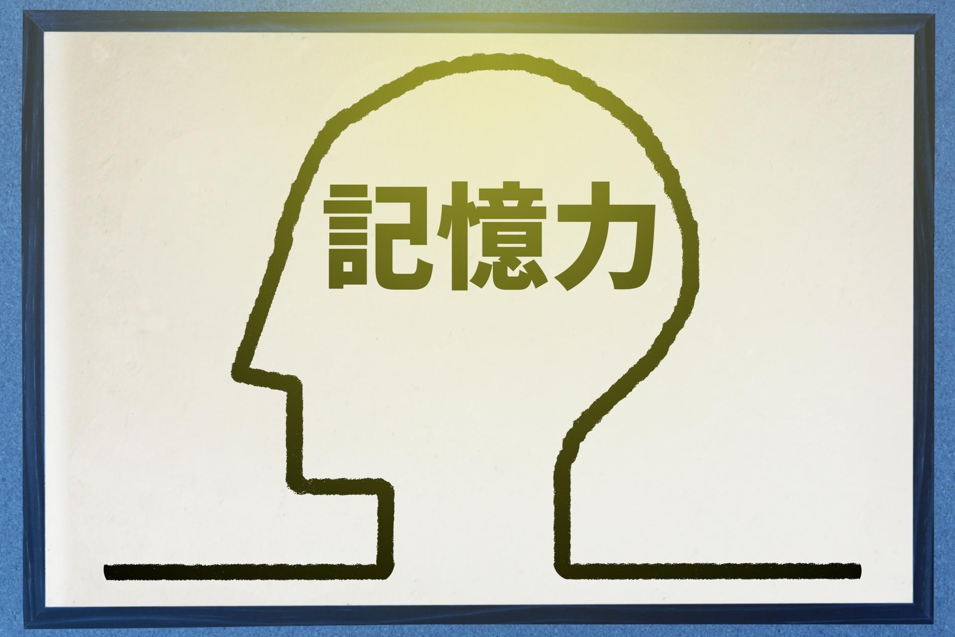 脳、記憶力、3歳